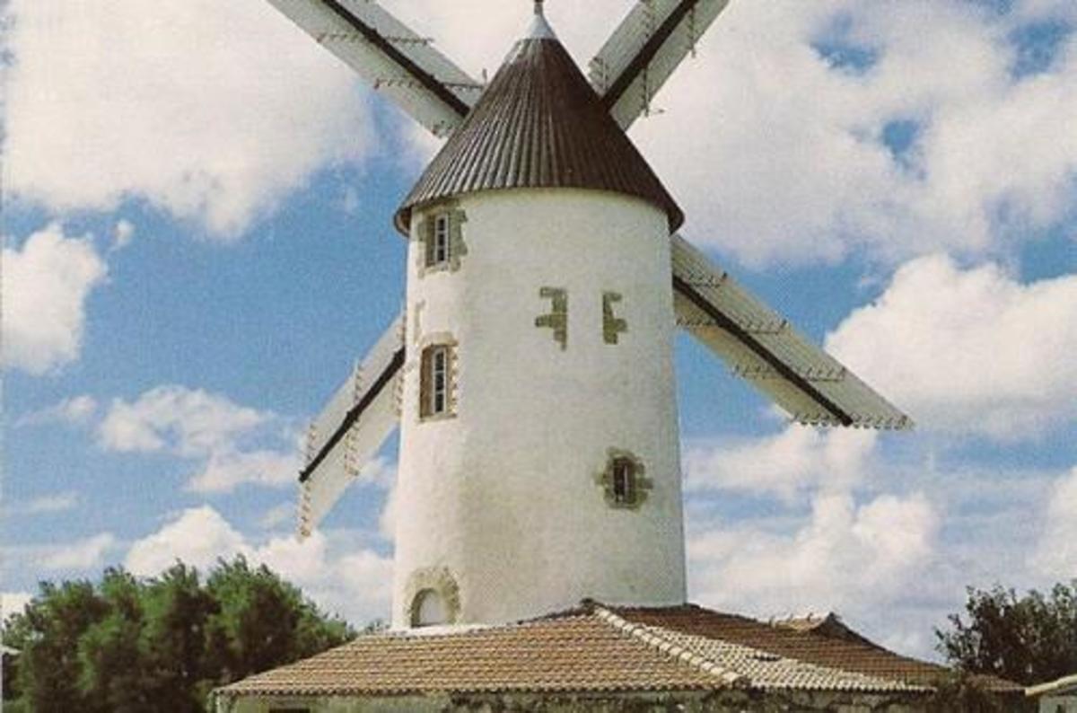 Domaine Le Jardin du Marais - Photo 70