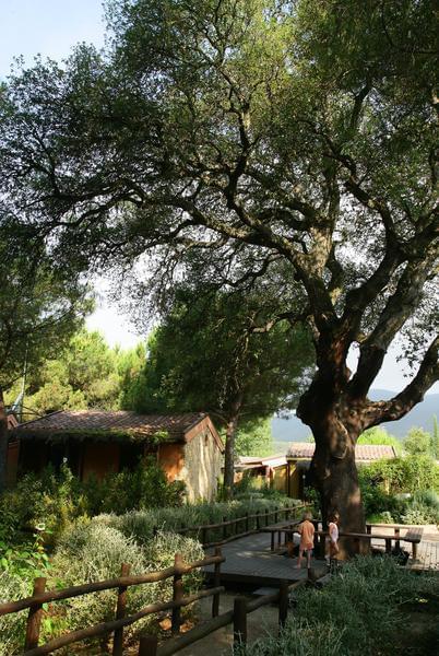 Camping Village Rocchette - Photo 9