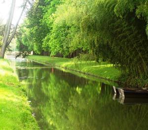 Moncontour Active Park - Terres de France - Photo 1159