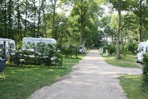 Camping de la Forêt - Photo 105