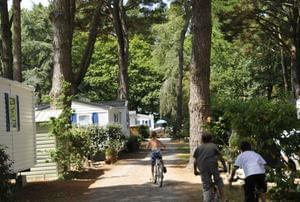 Camping Le Château du Petit Bois - Photo 0