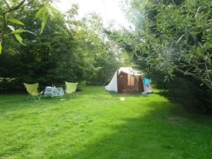 Camping les Ripettes - Photo 4