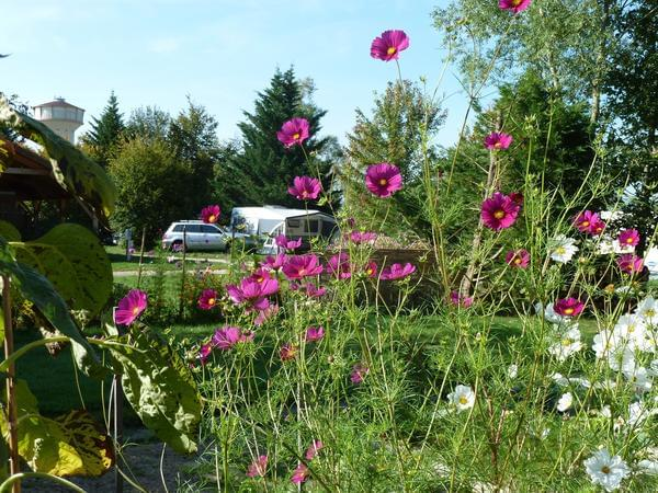 Camping les Ripettes - Photo 3