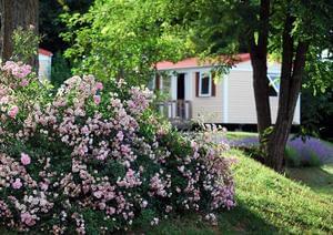 Flower Camping LE TEMPS DE VIVRE - Photo 2