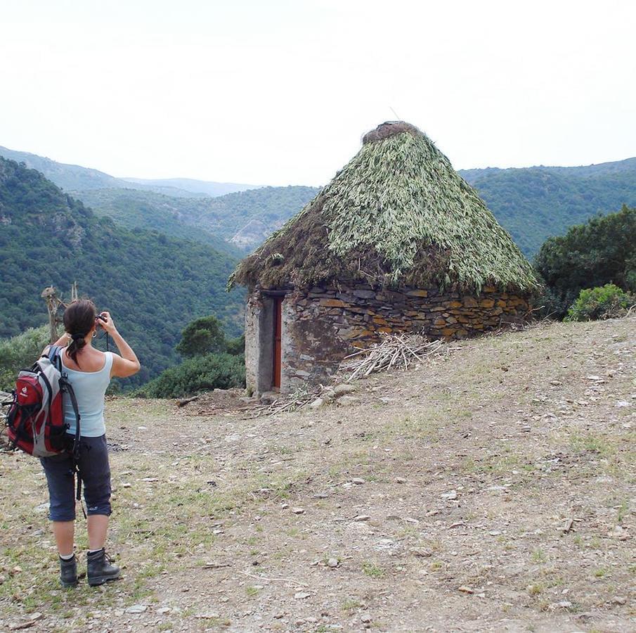 Camping Capo Ferrato - Photo 830