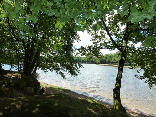Camping de L'Etang du Merle - Photo 3