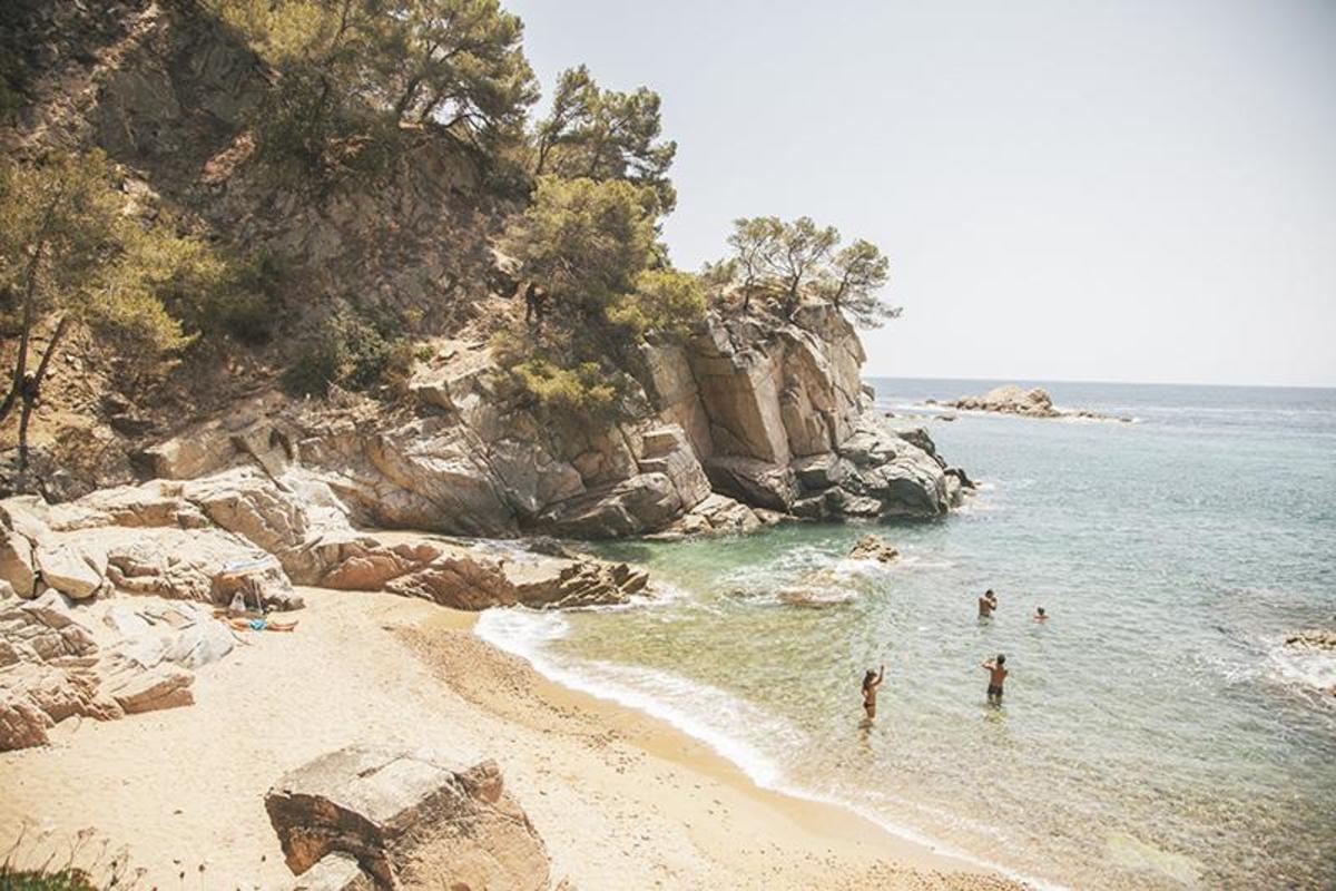 Sea Green - Cala llevado - Photo 501