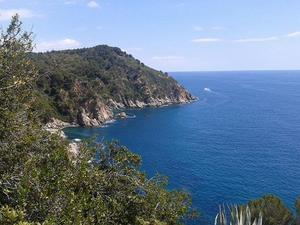 Sea Green - Cala llevado - Photo 1323