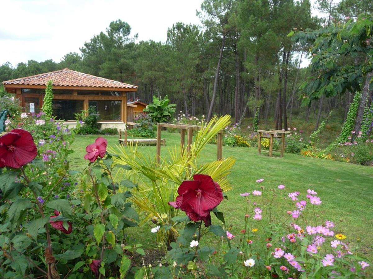 Camping LANDES OCEANES - Photo 4