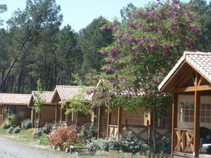 Camping LANDES OCEANES - Photo 2