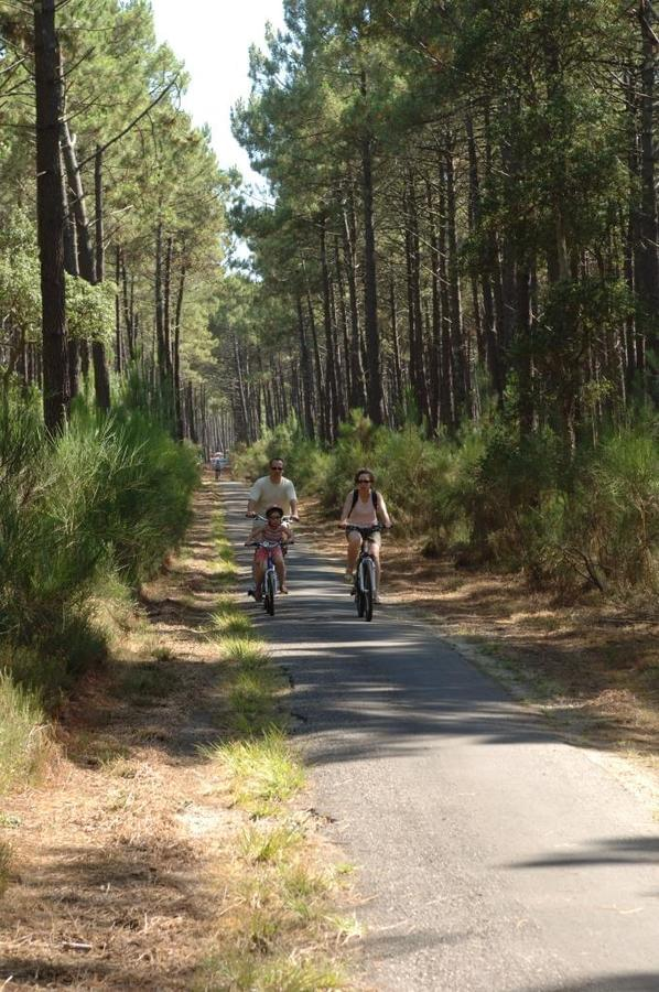 Camping LANDES OCEANES - Photo 51