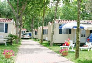 Camping Oasi - Photo 6