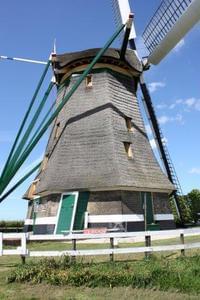 Delftse Hout - Photo 52