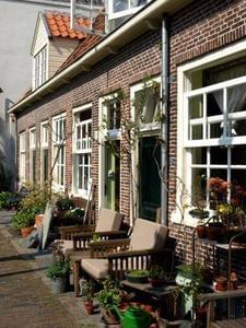 Delftse Hout - Photo 57