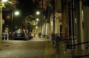 Delftse Hout - Photo 61