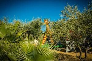 Flower Camping Le Mas de Mourgues - Photo 37