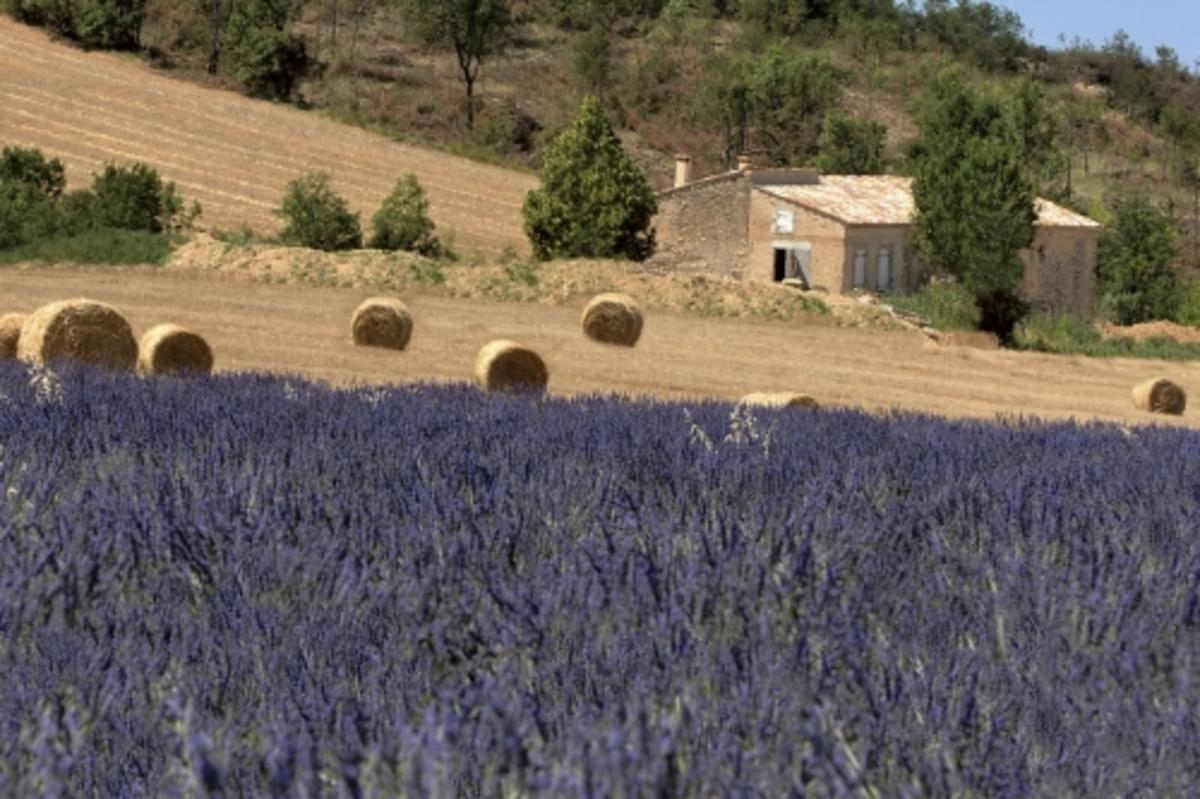 RCN la Bastide en Ardèche - Photo 1111