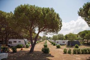 Camping Village Baia Blu la Tortuga - Photo 2