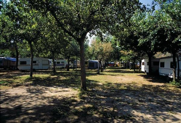 International Camping Torre di Cerrano - Photo 7