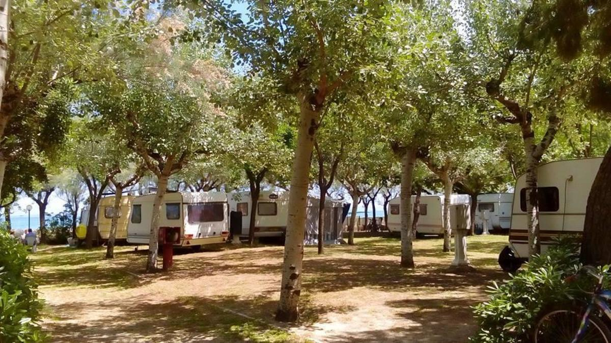 International Camping Torre di Cerrano - Photo 9