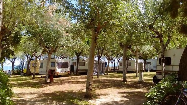 International Camping Torre di Cerrano - Photo 9