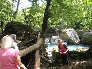 Aktiv Camp Purgstall Camping- & Ferienpark - Photo 15