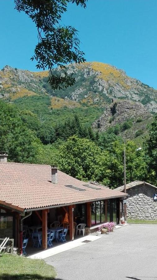 Camping Les Rives de l'Ardèche - Photo 8