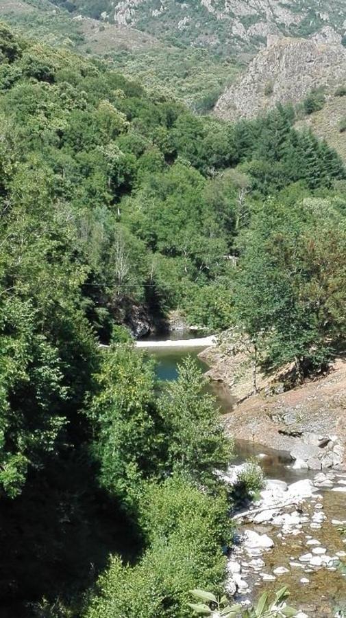 Camping Les Rives de l'Ardèche - Photo 15