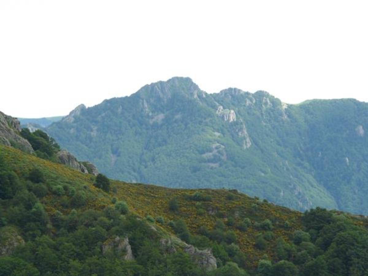 Camping Les Rives de l'Ardèche - Photo 30