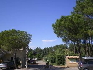 Camping La Rouvière Les Pins - Photo 4