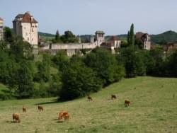 Les Hameaux du Perrier - Terres de France - Photo 1197