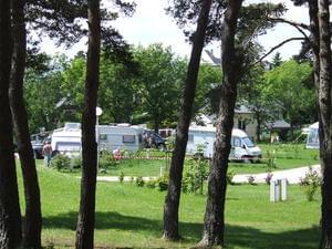 Camping Le Petit Bois*** - Photo 2