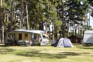 Camping Le Petit Bois*** - Photo 1307