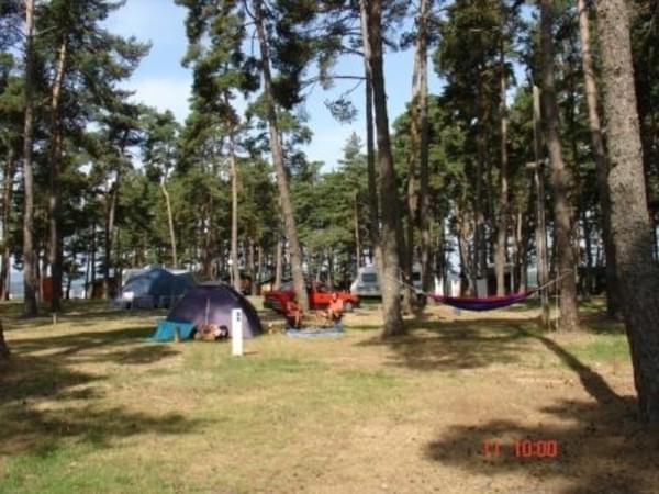 Camping Le Petit Bois*** - Photo 105