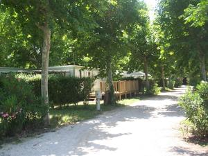 Camping Lou Comtadou - Photo 3
