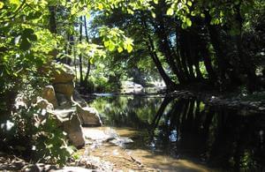 Camping L'Orée des Cévennes - Photo 4