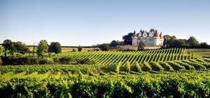 Sites et Paysages Domaine de l'Etang de Bazange - Photo 39