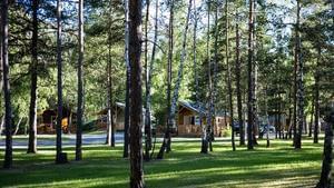 Camping-Caravaneige l'Iscle de Prelles - Photo 4