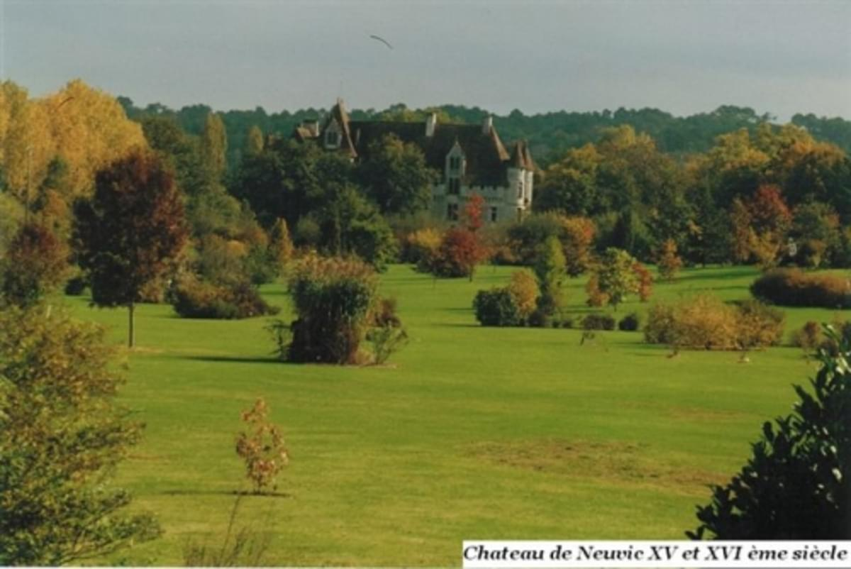Camping Le Plein Air Neuvicois - Photo 29