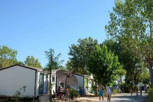 Camping Domaine du Golfe de Saint Tropez - Photo 7