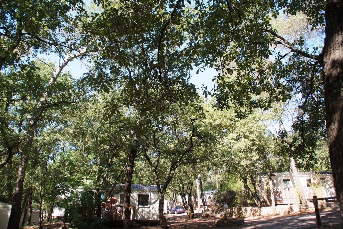Camping Le Parc - Photo 7