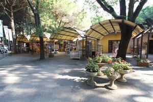 Camping Mare e Pineta - Photo 25