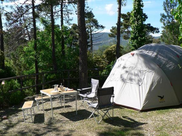 Camping La Pineta - Photo 3