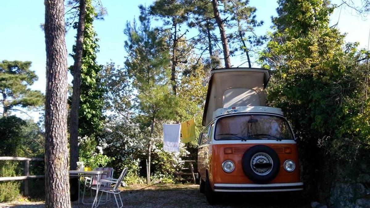 Camping La Pineta - Photo 1
