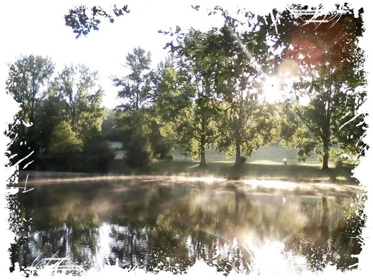Camping Paradis Etangs de Plessac - Photo 3