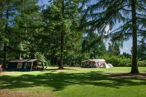 RCN Vakantiepark de Roggeberg - Photo 12
