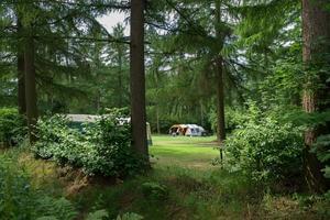 RCN Vakantiepark de Roggeberg - Photo 10
