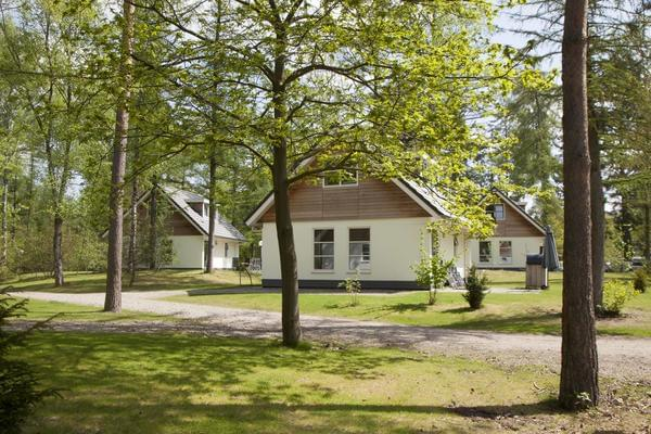 RCN Vakantiepark het Grote Bos - Photo 3