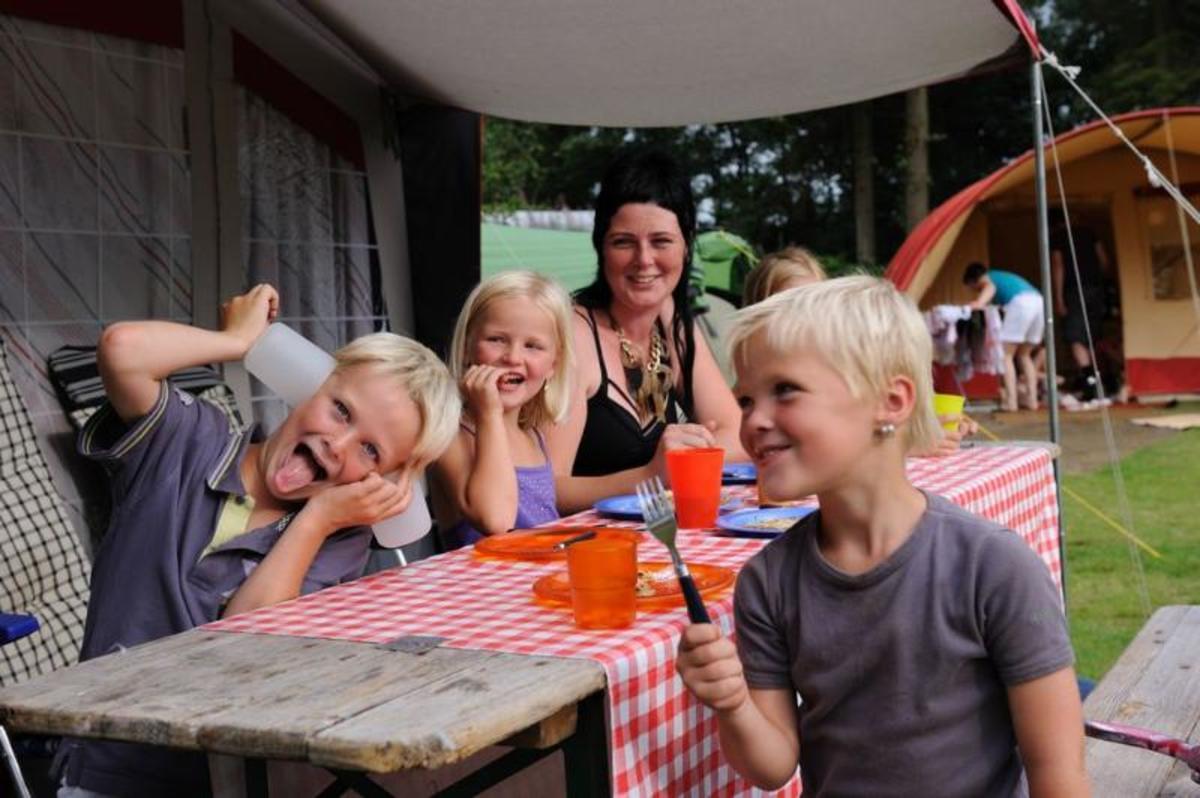 RCN Vakantiepark de Roggeberg - Photo 28