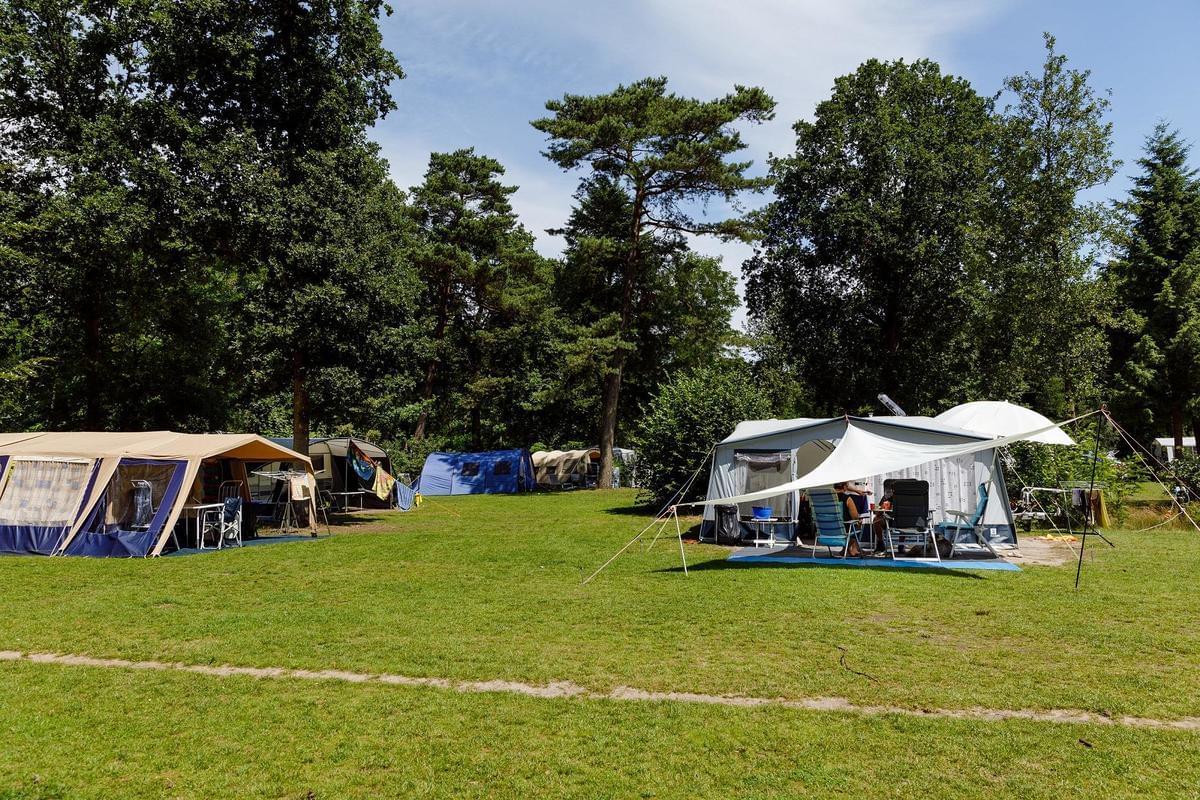 RCN Vakantiepark het Grote Bos - Photo 10